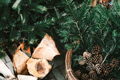 pine needles and pine cones next to dried wood for a fire can cause eye hazards